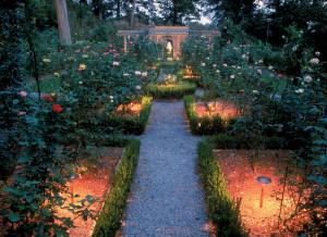 Garden Lighting ensures your flowers and foliage are visible after dark.